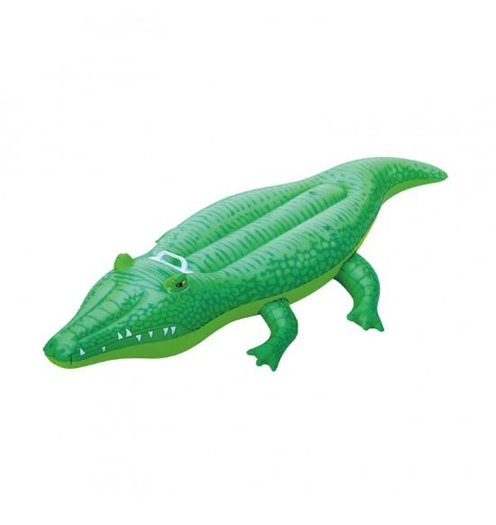 Krokodíl - vizitka
