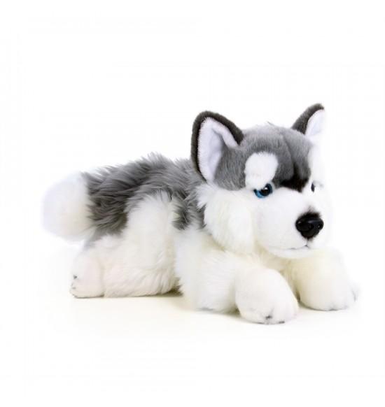 Plyšový pes husky ležiaci, 30 cm