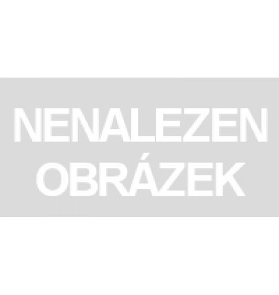 FP SPIEVAJÚCE DARČEKY SK